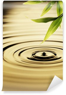 Vinyl Fotobehang Verse bamboe bladeren over water