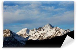 Vinyl Fotobehang Winter Alp bergen