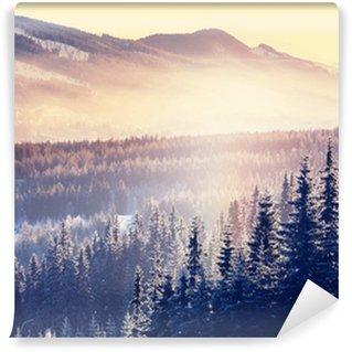 Vinyl Fotobehang Winter de bergen