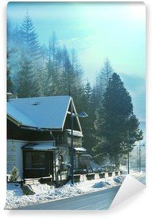 Vinyl Fotobehang Winter in Alp bergen