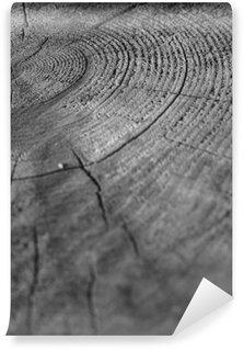 Vinyl Fotobehang Wood