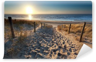 Vinyl Fotobehang Zonneschijn over pad naar het strand in Noordzee