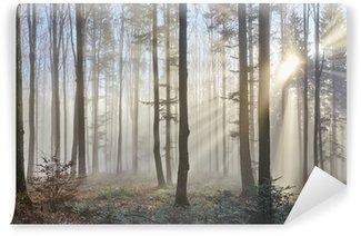 Vinyl Fotobehang Zonnestralen in een mistig bos