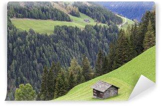 Fotomural de Vinil Alp shed on a mountain slope