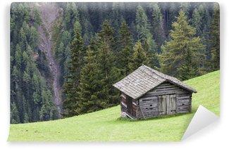 Fotomural de Vinil Alp shed on a slope
