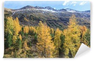 Fotomural de Vinil Alp view