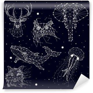 Fotomural de Vinil Conjunto de constelação, elefante, coruja, cervos, baleias, água-viva, raposa, estrela, gráficos vetoriais