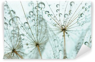 Fotomural de Vinil Dandelion seed with drops