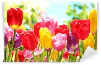 Fotomural de Vinil Fresh tulips in warm sunlight
