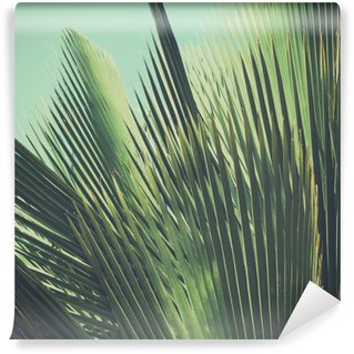Fotomural Lavável Fundo do vintage tropical abstrato. Folhas de palmeira na luz solar.