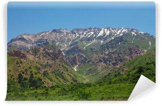 Fotomural de Vinil Mountain alp