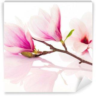 Fotomural de Vinil Pink spring flowers with reflection