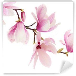 Fotomural de Vinil Pink spring magnolia flowers branch