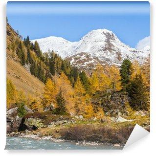 Fotomural de Vinil River in autumn alp landscape