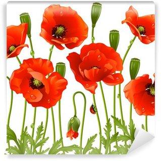 Fotomural de Vinil Spring flowers: poppy