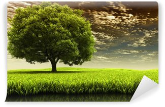 Fotomural de Vinil Spring landscape