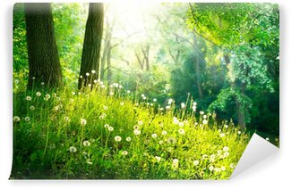 Fotomural de Vinil Spring Nature. Beautiful Landscape. Green Grass and Trees