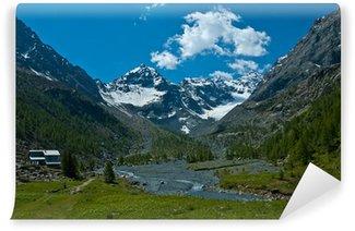 Fotomural de Vinil Ventina Alp, Valmalenco - Italy