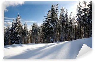 Fotomural de Vinil Winter