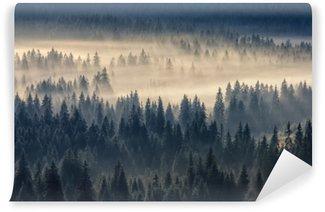 Fotomural Autoadhesivo Bosque de coníferas en las montañas de niebla