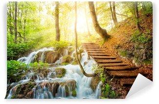 Fotomural Autoadhesivo Corriente del bosque profundo con agua cristalina. Lagos de Plitvice, Croacia