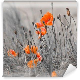 Fotomural Autoadhesivo Poppies