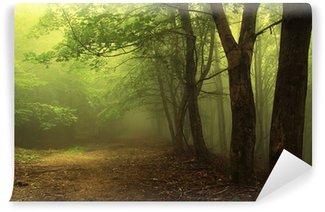 Fotomural Estándar Bosque verde con niebla