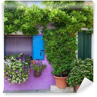 Fotomural Estándar Casa de color en la isla de Burano, cerca de Venecia, Italia