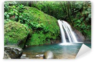 Fotomural Estándar Cascada en foret tropicale