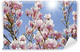 Fotomural Estándar Cielo azul con flor de magnolia