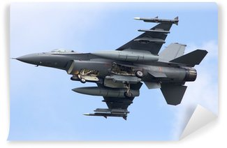 Fotomural Estándar Combatiente de jet