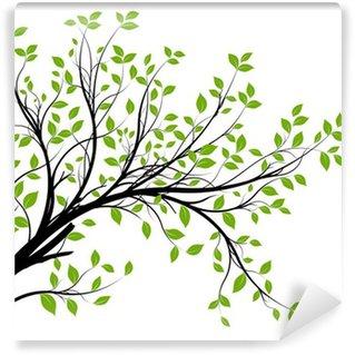 Fotomural Estándar Conjunto de vectores - rama decorativo verde y hojas