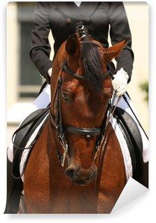 Fotomural Estándar Doma de caballos
