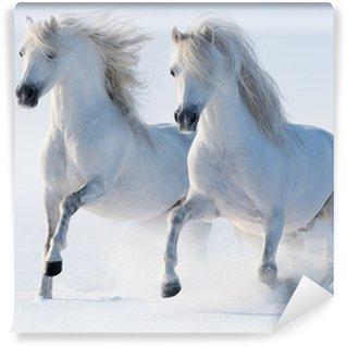 Fotomural Estándar Dos galope los caballos blancos como la nieve
