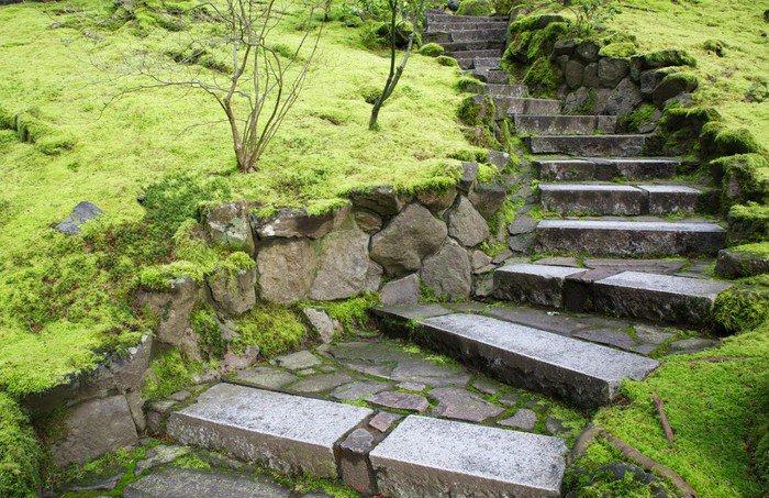 fotomural estndar escaleras de piedra del jardn curved temas
