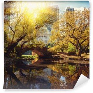 Fotomural Estándar Estanque de Central Park y el puente. Nueva York, EE.UU..
