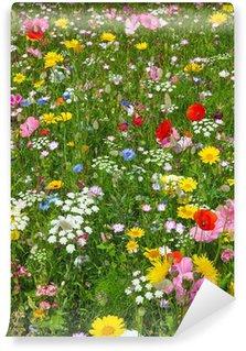 Fotomural Estándar Flores silvestres en un prado