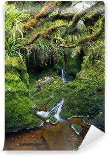 Fotomural Estándar Forêt tropicale vierge, La Réunion.