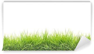 Fotomural Estándar Fresh spring green grass
