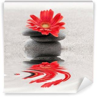 Fotomural Estándar Galets et reflet gerbera zen
