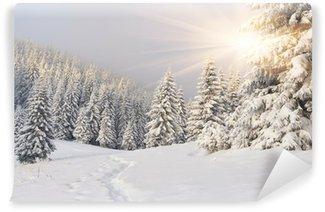 Fotomural Lavable Hermoso paisaje de invierno en las montañas. Salida del sol