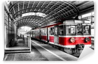 Fotomural Lavable Tren