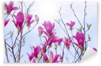 Fotomural Estándar Magnolia árbol de flor