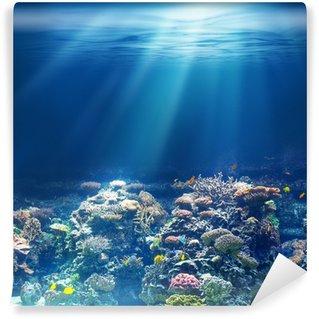 Fotomural Estándar Mar u océano de coral bajo el agua arrecife