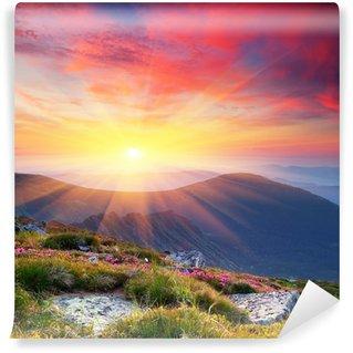 Fotomural Estándar Paisaje de verano en las montañas con el sol