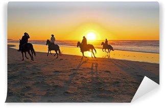 Fotomural Estándar Paseos a caballo en la playa al atardecer