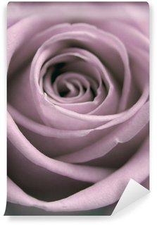 Fotomural Estándar Pastel rosa