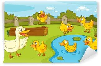 Fotomural Estándar Patos en el estanque