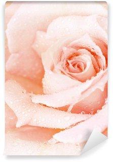 Fotomural Estándar Pink húmedo fondo rosa