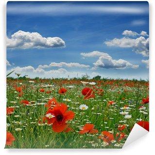 Fotomural Estándar Primavera: Campo de amapolas con cielo azul y las nubes